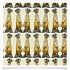 member's free backing paper meerkat dark cream