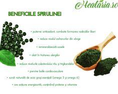 Spirulina, o micro-algă cu macro-efecte, un superaliment, concentrat de nutrienți.🌱🙏💪 Spirulina este efectiv un concentrat de nutrienți. Extrem de bogată în: ✔betacaroten ✔fier ✔vitamina b12 ✔vitamina E ✔proteine ✔minerale ✔clorofilă ✔ficocianină ____________________________________ • • • • #healaria #vindecareprinplante #spirulina #spirulinapulbere #beneficiispirulina #traiestesanatos #manancasanatos #healthylifestyle #healthygoals #plantemedicinale #plantenaturale #superalimente Spirulina, Omega 3, Cantaloupe, Fruit, Instagram