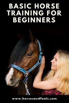"""Don't be taken in by articles and advice regarding learning """"basic horse training for beginners"""". Attempting to """"train"""" a horse when you don't know what you are doing is an activity that is doomed to fail. Handling a horse badly can result in injury to you and the horse. If nothing else, improper handling can ruin the horse and make it difficult or impossible for someone knowledgeable to unravel the mess caused by """"beginner's horse training""""."""