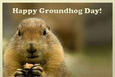 "Happy Groundhog Day ( 3"" x 5"" ) FRIDGE MAGNET (BB)"