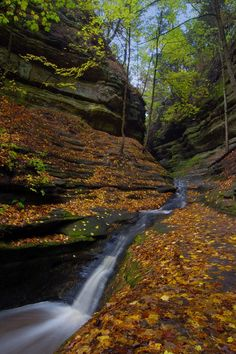Starved Rock State Park.  Lots of canyons - on my list of places to hike next fall.