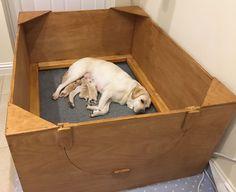 Whelping Box Construction Plans & Whelping Box Construction Plans | puppies | Pinterest | Whelping ... Aboutintivar.Com
