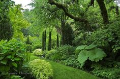 Cynthia Woodyard Landscape Design Horticultural Photography