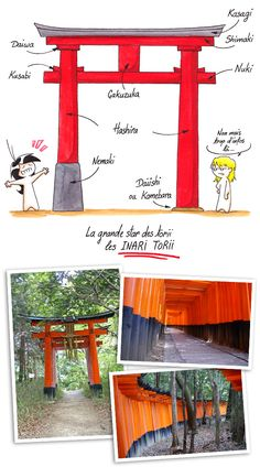 The different elements that make up a torii and the Inari torii. Japanese Gate, Japanese Shrine, Japanese Garden Design, Japanese Interior, Japanese House, Japanese Gardens, Cultural Architecture, Garden Architecture, Japanese Architecture