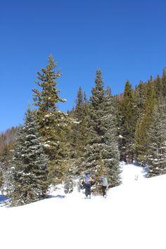 Top 5 Effects of High Altitude Living in Colorado Springs - Colorado Springs Real Estate