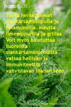 via hortoilu.fi Detox, Pure Products, Tea, Nature, Food, Vegetable Garden, Naturaleza, Eten, Teas