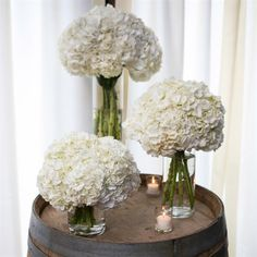 Why dont we put our flowers in vases after the wedding like at our wedding party tables - White Hydrangeas