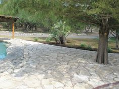 Flagstone patio with river rock aggregate and xeriscaping.