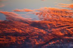 Fire in the clouds by Borboletas Photography