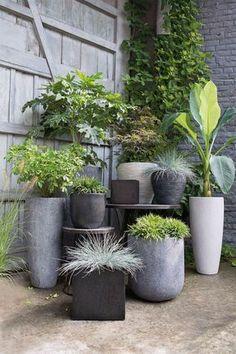 """Des pots de fleurs au look industriel chez Jardiland - Longs, arrondis, carrés, petits... Ces pots de fleurs en fibre se déclinent sous toutes les formes. Leurs teintes grisâtres, qui rappellent celles du béton, apportent un côté industriel et moderne, parfait pour un balcon citadin.Pots de fleurs en fibre. Pot """"oeuf"""", à partir de 29,90 euros, Ø 28/35/43 cm. Pot """"évasé strié"""", à partir de 29,90 euros, Ø 31/42 cm. Pot """"carré"""", à partir de 15,90 euros, L. 20/30/40/50 cm. Pot """"rond"""", à partir…"""