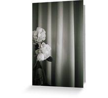 Analog silver gelatin 35mm film photo of white rose flowers in vase Greeting Card