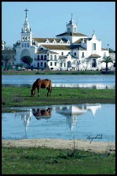 Fotografías de M. Carmen Longobardo Vela | Rocio.com - Almonte Huelva  Spain