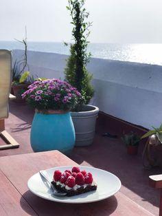 La Glicinia Gourmet: DELICIAS DE CHOCOLATE Planter Pots, About Me Blog, Gourmet, Chocolate Favors