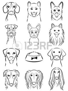 Dog / Line Drawing Royalty Free Cliparts, Vectors, And Stock Illustration. Pic Dog / Line Drawing Royalty Free Cliparts, Vectors, And Stock Illustration. Doodle Drawings, Animal Drawings, Drawings Of Dogs, Pencil Drawings, Drawing Animals, Drawing Faces, Doodle Art, Dog Line Drawing, Dog Drawing Easy