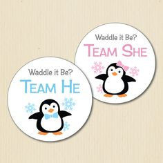 BABY PENGUIN Gender Reveal Party Stickers by BestWishesBoutique
