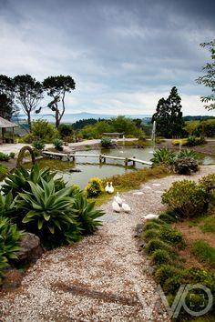 Zen Garden Auckland
