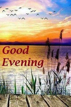Good Evening Friends New Images Good Evening Images Good Evening