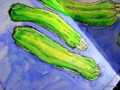 Zucchini Sketches