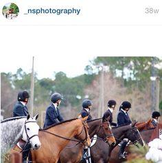 Equestrians #equestrian #equestrians #horse #photography