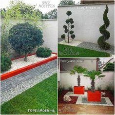* Csináld magad kertépítés *: Kertépítés ötletek, megoldások Land Scape, Beautiful Gardens, Sidewalk, Modern, Plants, Gardening, Planters, Gardens, Trendy Tree