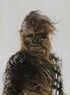 What a Wookie.