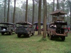 LANDIES CONVENTION IN THE WOODS