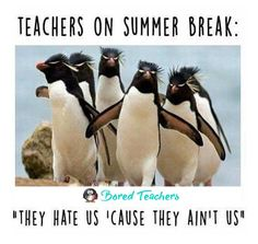 36 Summer Teacher Memes To Keep You Laughing Until September – Bored Teachers