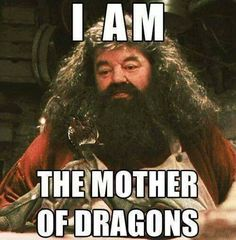Harry Potter Games, Harry Potter Cast, Harry Potter Quotes, Harry Potter Fandom, Hagrid Quotes, Harry Potter Crossover, Best Funny Images, Funny Pictures, Funny Pics