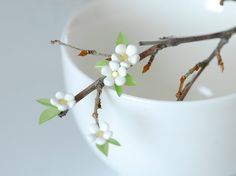 Lemon blossoms by {JooJoo}, via Flickr