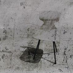 """série:""""Nos chairs disparues"""" Phédia mazuc"""