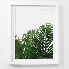 Palm Leaf Print, Palm Wall Art, Palm Leaf Decor, Plant Wall Art, Leaf Wall Art, Tropical Wall Prints, Palm Leaf, Tropical Art, Printable by MelindaWoodDesigns on Etsy https://www.etsy.com/listing/505412356/palm-leaf-print-palm-wall-art-palm-leaf