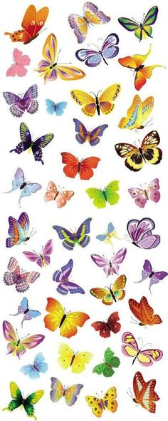 Purple butterflies are one of the