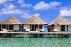 Travel Bugg EN - Velassaru Maldives