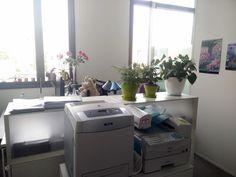Christine est l'assistante du Directeur de la Communication Groupe. Elle a très joliment fleuri son bureau, avec notamment un superbe bouquet de rose ! On aime aussi beaucoup les peluches à droite de l'écran :)