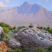 Sold   Volschenk, Jan Ernst Abraham   Mozambiquerskop - Riversdale Land Surveyors, Jungle Scene, South African Art, Landscape, Projects, Painting, Log Projects, Blue Prints, Scenery