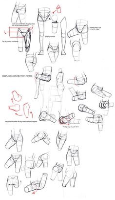 50% grey Folder of Drawing Tips and Tricks ✤ || CHARACTER DESIGN REFERENCES | キャラクターデザイン • Find more at www.facebook.com/... if you're looking for: #lineart #art #character #design #animation #draw #tibia #reference #anatomy #fibula #artist #pose #gestures #how #to #tutorial #comics #conceptart #modelsheet #femur #legs #leg #heel #ankle #thigh #haunch #knees #quadriceps #calves #hamstrings || ✤