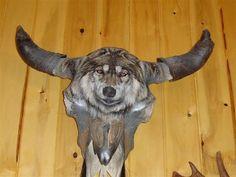 painted deer skulls   Last edited by GSLAM95; June 10th, 2007 at 11:17 PM .