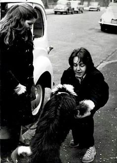 "Celebrities and their companions: Paul McCartney with ""his Martha"" Beatles Love, Beatles Songs, Beatles Photos, Great Bands, Cool Bands, Martha My Dear, Paul Mccartney And Wings, Linda Mccartney, Sir Paul"