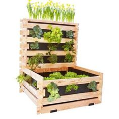 4 conseils jardinage pour les plantes en pots jardins fils et design. Black Bedroom Furniture Sets. Home Design Ideas