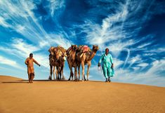 Find camel stock images in HD and millions of other royalty-free stock photos, illustrations and vectors in the Shutterstock collection. Best Places To Honeymoon, Romantic Honeymoon, Honeymoon Destinations, Beautiful Islands, Beautiful Places, Hill Station, Cool Countries, Incredible India, Cool Places To Visit