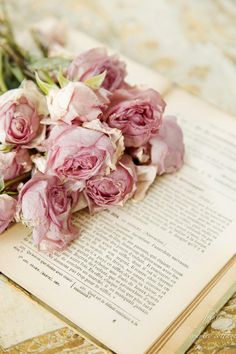 Dried rose bouquet on a vintage book