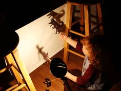 Day 78- Have a shadow puppet night.