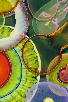 L'artiste de Chicago Bruce Riley utilise de la résine aux couleurs vives qu'il laisse couler par goutte et s'étendre sur des plaques de plexiglass pour créer des motifs psychédéliques.