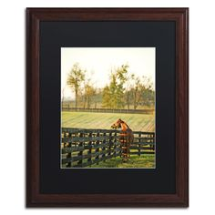 Kentucky Horse Sunrise by Preston Framed Photographic Print