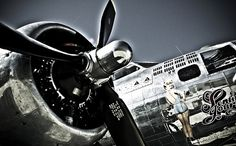 avion   Olivier Lavielle