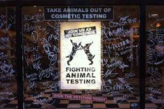 LUSH and Humane Society International launch campaign to end animal testing - click through to read the story.