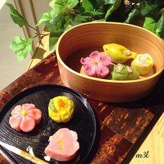桜、菊、鶯などなど作りました❁  地元秋田から届いた曲げわっぱ弁当箱をさりげなく?使ってみました笑笑 久しぶりに作ったのでとっても楽しかったです(✿╹◡╹) 時間はすごくかかりましたが - 102件のもぐもぐ - 練り切り❁だいぶ久しぶりですがなんとかできました((´∀`*)) by m3l929hiro