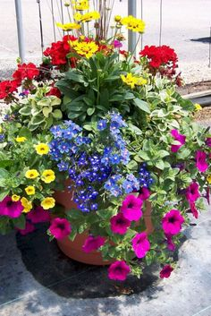Container Flowers Ideas New Patio Flower Pots Ideas Garden Container Planting Ideas Crates and sourc Container Flowers, Flower Planters, Garden Planters, Full Sun Container Plants, Full Sun Planters, Porch Planter, Large Flower Pots, Balcony Gardening, Kitchen Gardening