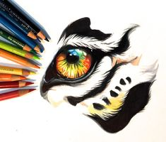 Colorful Tiger Eye by Lucky978.deviantart.com on @DeviantArt