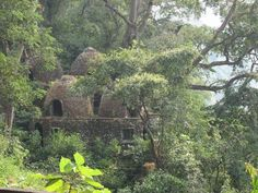 File:Meditation chambers at the old Maharishi Mahesh Yogi Ashram, now in ruins, Muni Ki Reti. Rishikesh Ashram, Rishikesh India, Indian Spirituality, Maharishi Mahesh Yogi, Spiritual Inspiration, India Travel, The Beatles, Natural Beauty, Beautiful Places